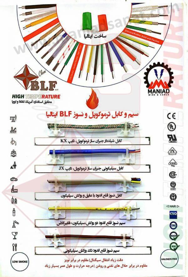 کابل ترموکوپل BLF ایتالیا